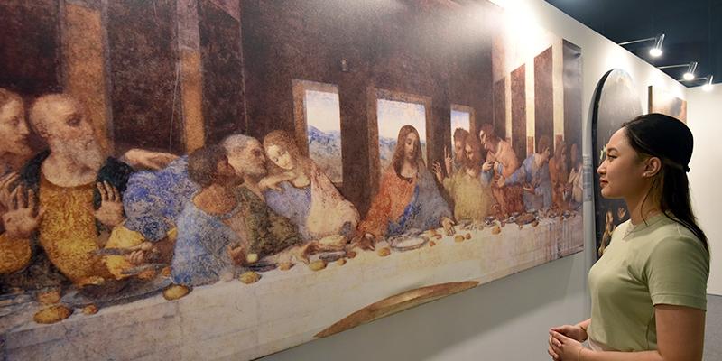Da Vinci Web Image - Painting