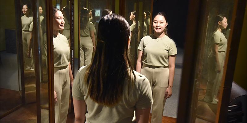 Da Vinci Web Image - Room of Mirrors